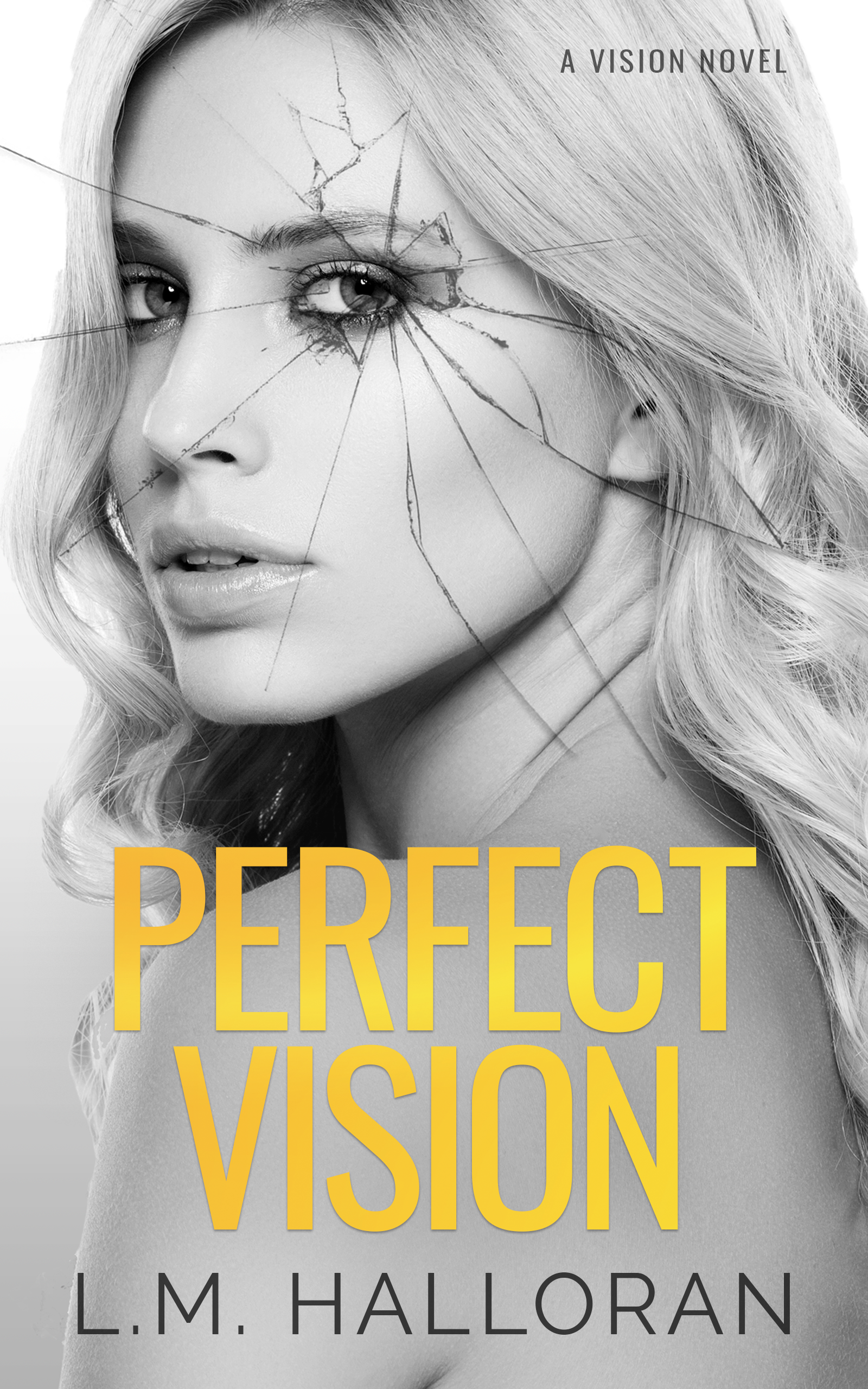 Perfect Vision by L.M. Halloran [Cover Reveal]